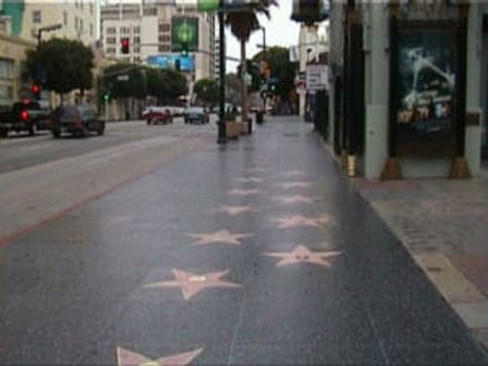 Walk of Fame - Hollywood Walk of Fame