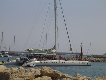 Magic Katamaran - Hafen Ibiza Stadt