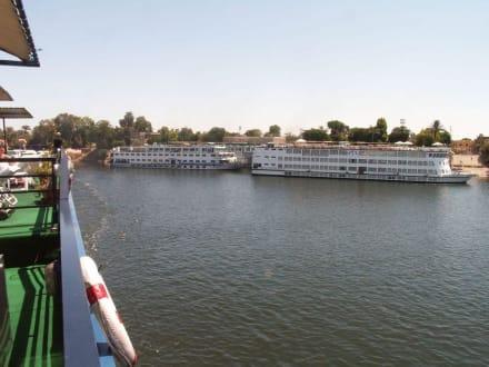 Nilkreuzfahrtschiffe  bei Luxor - Nil