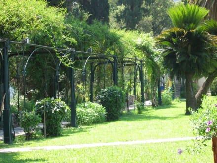 Garten Achillion - Schloss Achilleion