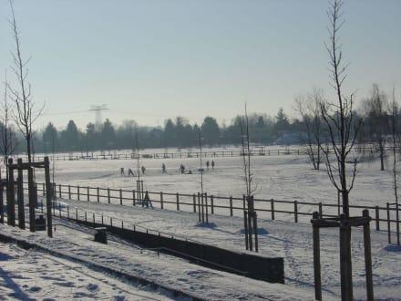 Winter im Park - Landschaftspark Rudow-Altglienicke