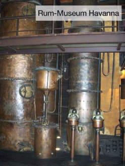 Havanna - Rum Museum - Havanna Club Rummuseum