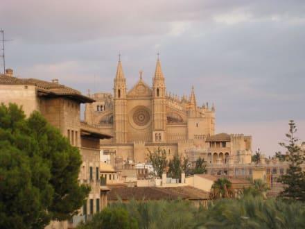 La Seu - Kathedrale La Seu