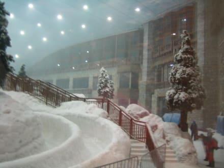 Mall of the Emirates - Skihalle - Ski-Dubai Halle (Mall of the Emirates)