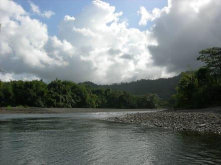 Super Landschaft für eine beschauliche Floßtour - Flossfahrt