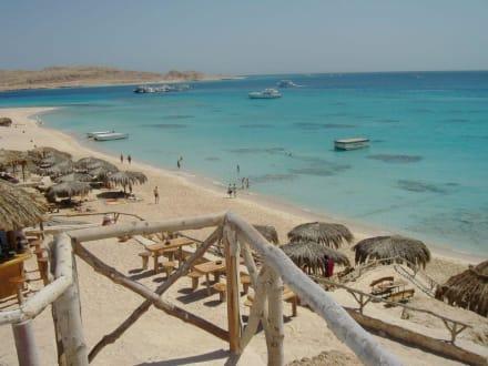 Mahmya - Giftun / Mahmya Inseln