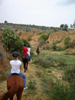 """Die """"Karawane"""" - Ranch Mabrouka"""