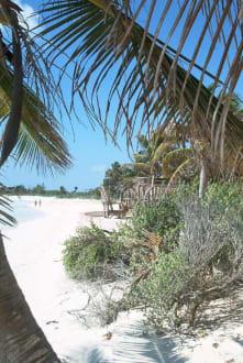 Versteckter Traum - Strand Playa del Carmen/Playacar