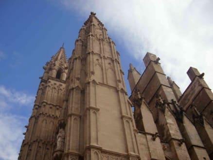 Türme 2 - Kathedrale La Seu