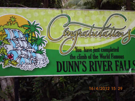 Aperçu de la photo - Dunn's River Falls