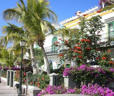 Häuser in Puerto de Mogan - Altstadt Puerto de Mogán