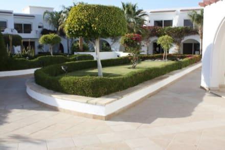 Gartenanlage,diese Seite ist für Ruhebedürftige - Hotel Iberotel Palace