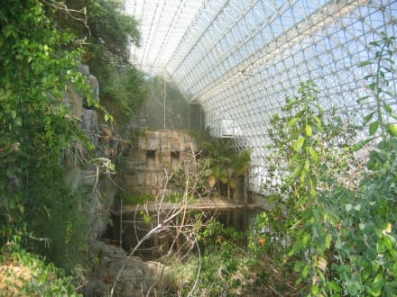 Tropenhalle der Biosphere 2 in Tucson - Biosphere 2