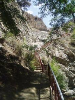 Treppen / Wanderweg - Troodos Gebirge