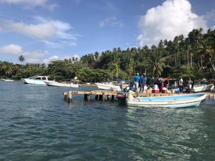 Bacardi Insel - Isla Cayo Levantado - Bacardi Insel - Isla Cayo Levantado