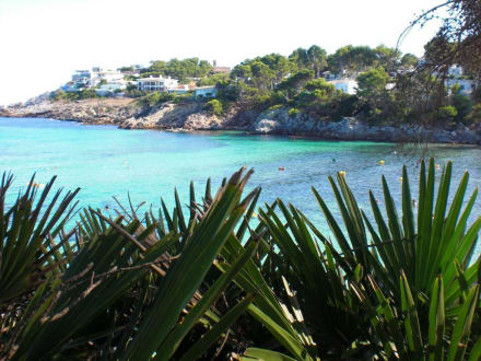Blick über die Bucht Font de sa Cala - Strand Sa Font de Sa Cala