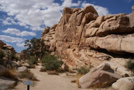 Hidden Valley Trail - Joshua Tree National Park