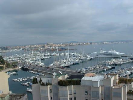 Blick von der Bar zum Hafen - Hafen Palma de Mallorca