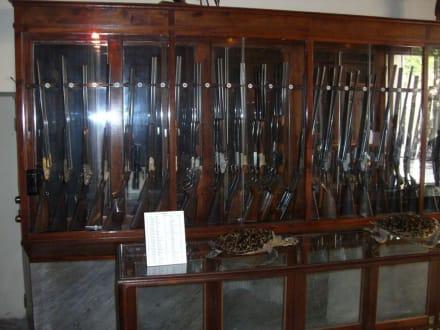 Waffengalerie - Museo de la Arms
