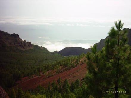 Parque Nacional del Teide - Teide Nationalpark