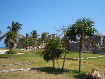 Ruinen - Ruinen von Tulum