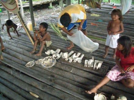 Besuch bei einer Indio Familie - Orinoco Delta