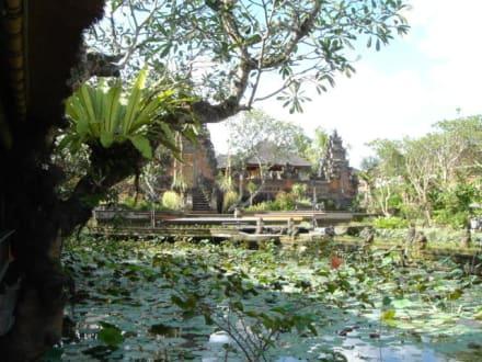 Lotus Café in Ubud - Tempel Taman Ayun