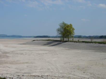 Forggensee im April ohne Wasser - Forggensee