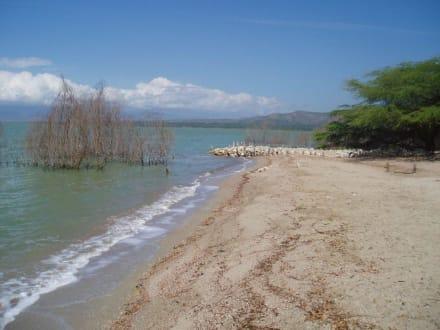Lago Enriquillo - Ausflüge & Touren