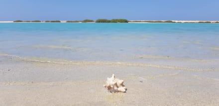 Qulaan Lagune - Geführte Touren Morgenland Reisen