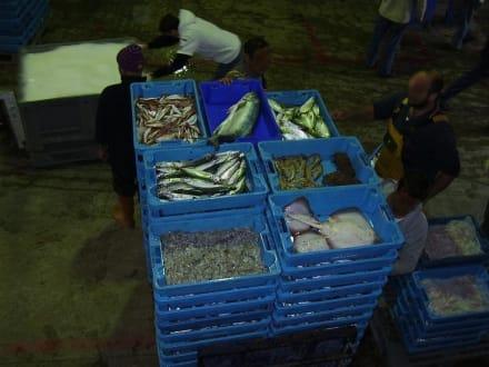 Calpe, Puerto Pesquero - Fischmarkt