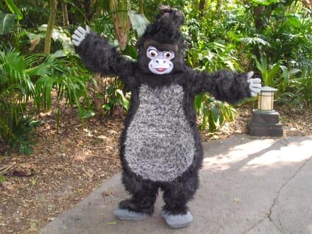 Disney's Animal Kingdom - Animal Kingdom