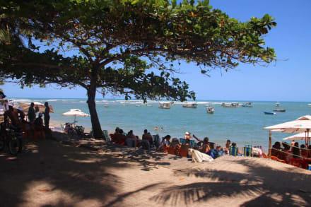 Praia do Forte - Guide Luis Praia do Forte