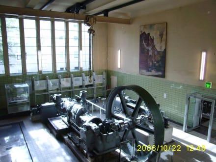 Dampfmaschine - Brauereimuseum