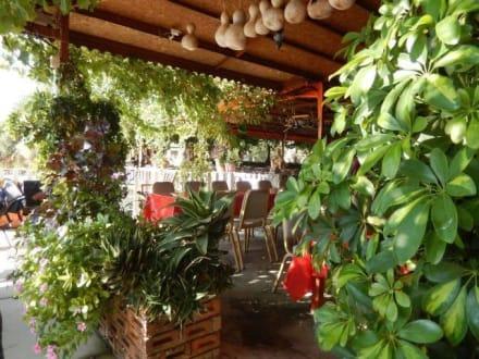Schönes Restaurant ausgesucht von Cham - Efe's Ausflüge