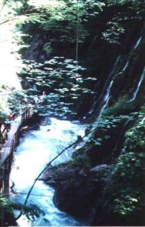 Der tosende Wimbach in der Klamm - Wimbachklamm