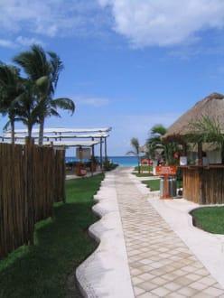 Kanu mit Glasboden-Location - Kanutour Isla Cozumel