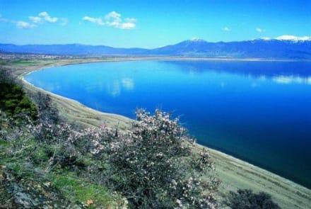 Ohrid See - Ohridsee