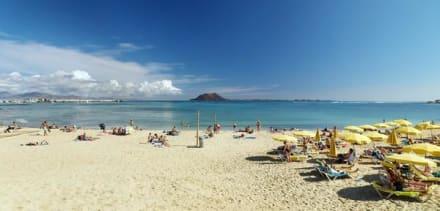 Beach - Strände Corralejo