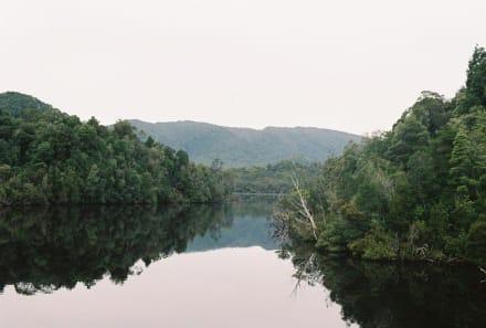 Gordon River Tour - Gordon River Tour