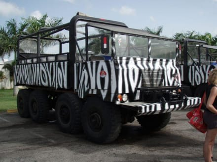 Monster-Truck-Safari ☼ - Monstertruck Safari Punta Cana