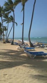 Strand - Sirenis Cocotal Beach Resort Casino & Aquagames