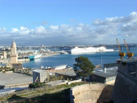 Hafen von Palma - Hafen Palma de Mallorca