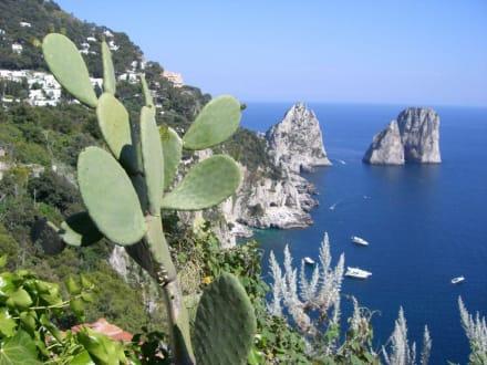 Küste von Capri - Faraglioni
