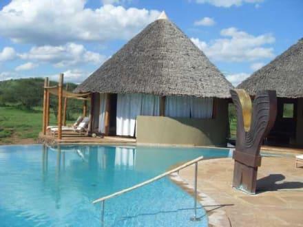 Pool - Severin Safari Camp