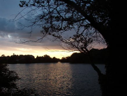 Sonnenuntergang - Knieper Teich