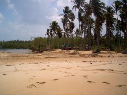 Starand der Playa Esmeralda - Playa Esmeralda - Punta del Rey