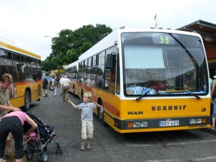 Maltabus - Transport