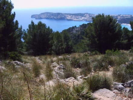 Wanderung nach Cala Mesquida Blick  - Wandern Cala Ratjada
