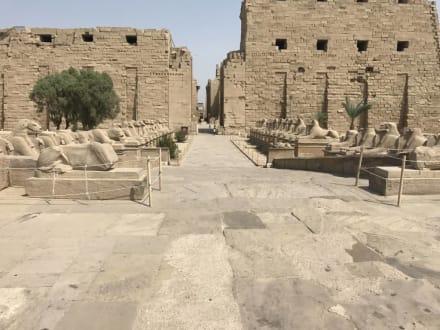 Karnak Tempel - Ägypten Ausflüge